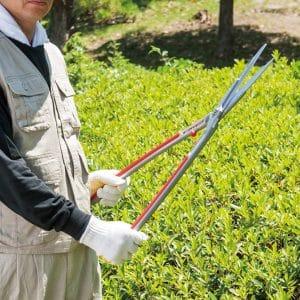 ARS ARS-KR Garden Hedge Shears