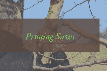 Best pruning saws reviews UK