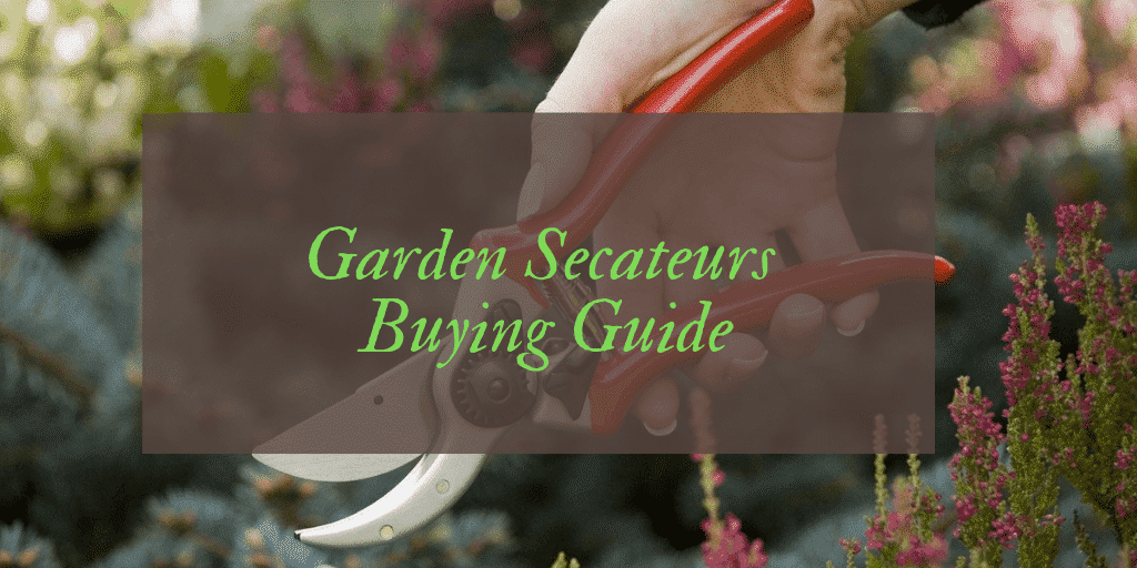 Best Secateurs