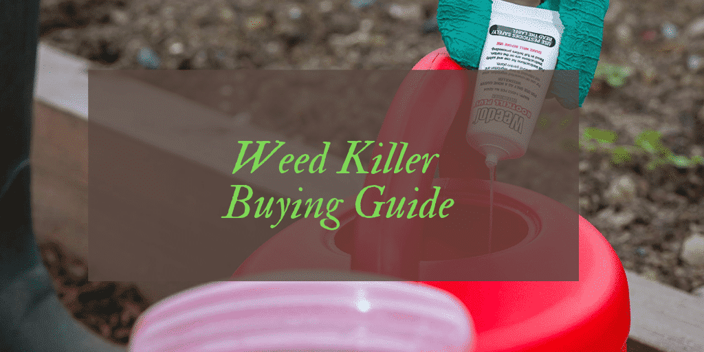 Weed Killer Reviews UK