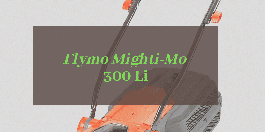 Mighti-Mo 300 Li Review