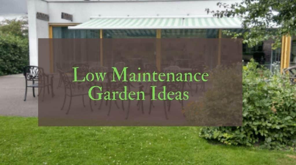 Low Maintenance Garden Ideas for small UK gardens