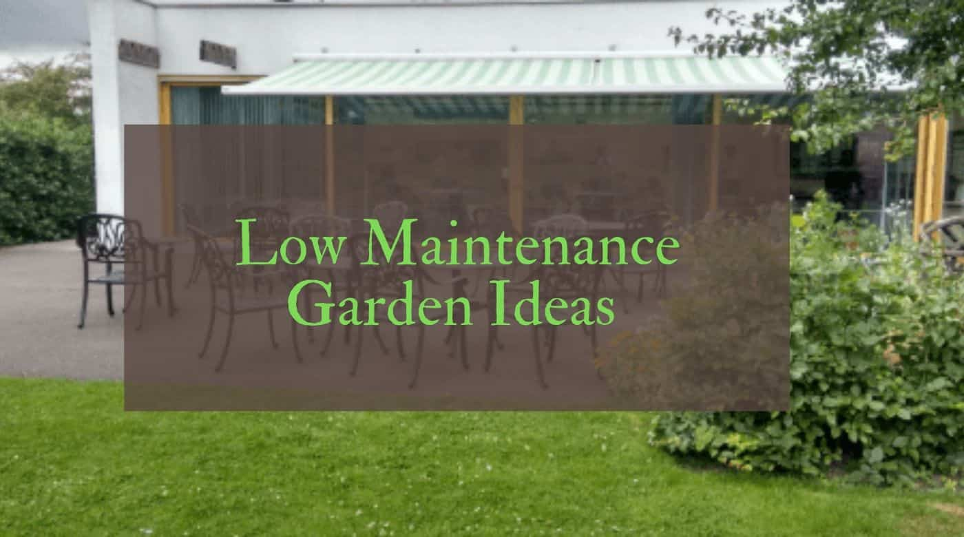 Low Maintenance Garden Ideas for Small UK Garden Spaces