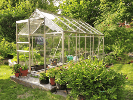 Make sure your greenhouse gets enough sunlight.