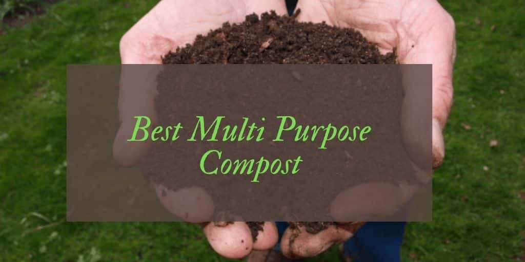 Best multi purpose compost UK