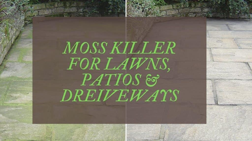 BEST MOSS KILLER REVIEWS UK