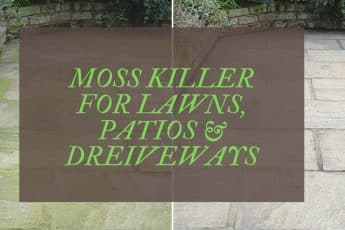BEST MOSS KILLER REVIEWS UK
