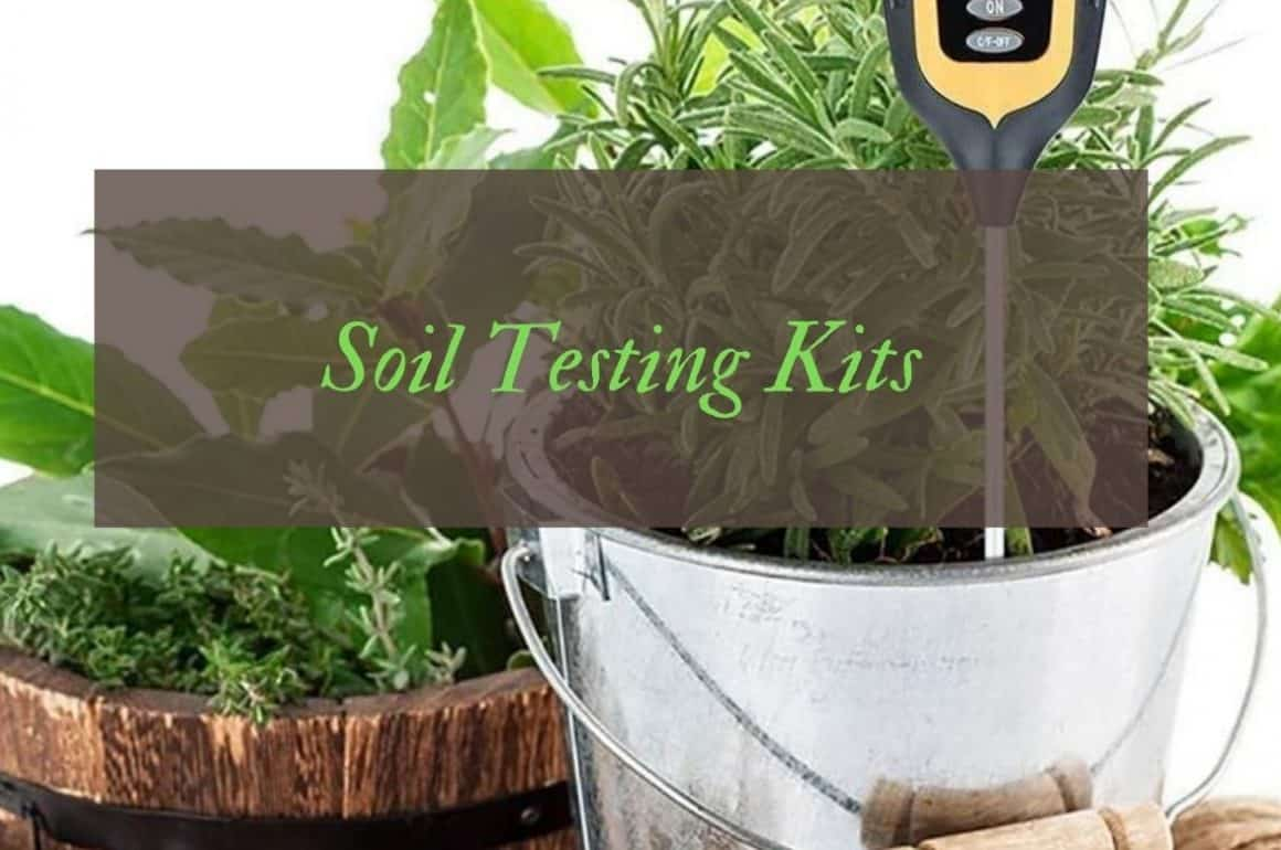 Best Soil Testing Kits