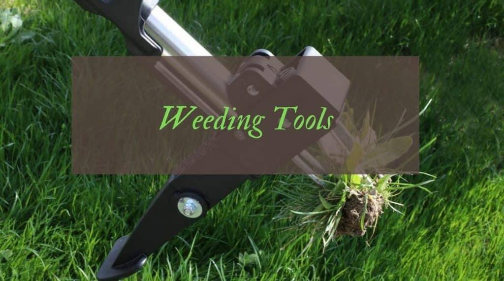 UK's Best Weed puling Tools