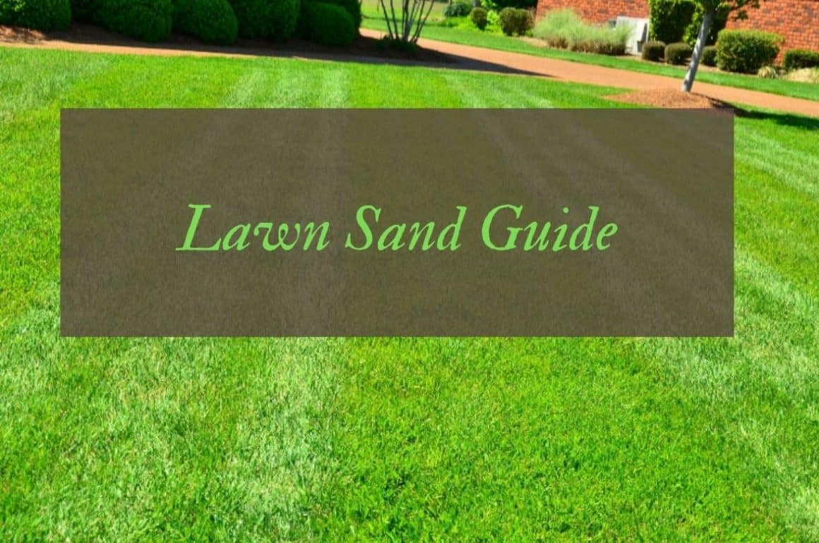 What is Lawn Sand and What Does it Do?
